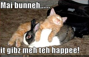 Mai bunneh......  it gibz meh teh happee!