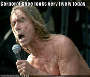 Corporal Shoe looks very lively today.