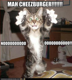 MAH CHEEZBURGER!!!!!!!