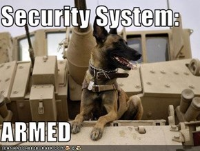 Security System:  ARMED