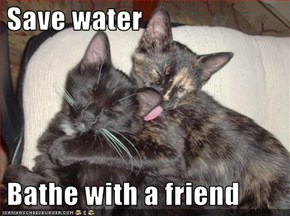 Save water   Bathe with a friend