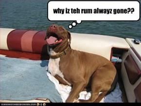 why iz teh rum alwayz gone??