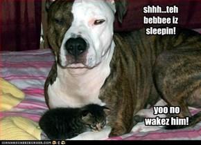 shhh...teh bebbee iz sleepin!