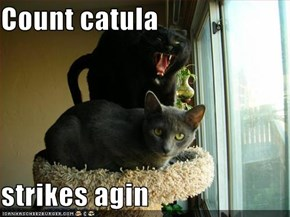 Count catula  strikes agin