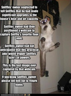 Sniffles' owner neglected to tell Sniffles that he had made significant upgrades to the house's heat and air capacity.  Sniffles' owner had then positioned a webcam to capture Sniffle's favorite floor vent.  Sniffles' owner had not anticipated that this p