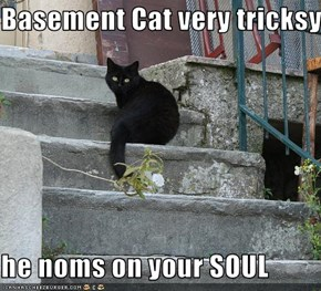Basement Cat very tricksy...  he noms on your SOUL