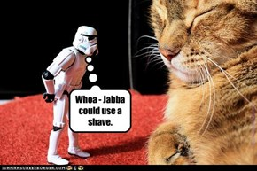 Whoa - Jabba could use a shave.