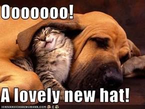 Ooooooo!  A lovely new hat!