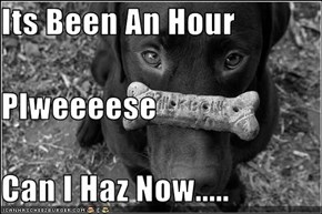 Its Been An Hour  Plweeeese Can I Haz Now.....