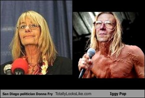 San Diego politician Donna Fry Totally Looks Like Iggy Pop