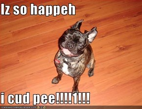 Iz so happeh  i cud pee!!!!1!!!