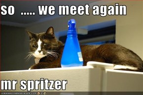 so  ..... we meet again  mr spritzer