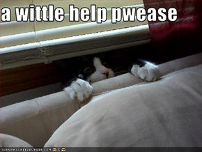 a wittle help pwease