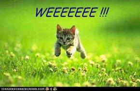 WEEEEEEE !!!