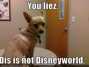 You liez.  Dis is not Disneyworld.