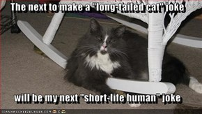 "The next to make a ""long-tailed cat"" joke  will be my next ""short-life human"" joke"