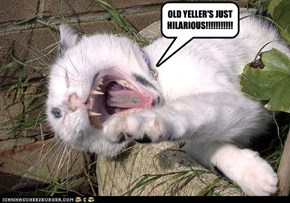 OLD YELLER'S JUST HILARIOUS!!!!!!!!!!!