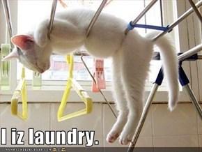 I iz laundry.