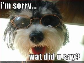 i'm sorry...  wat did u say?