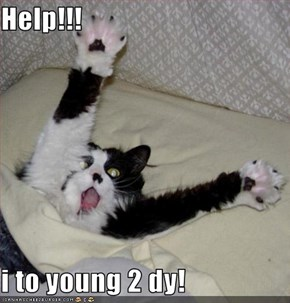 Help!!!  i to young 2 dy!