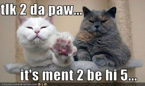 tlk 2 da paw...  it's ment 2 be hi 5...