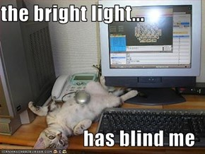 the bright light...  has blind me