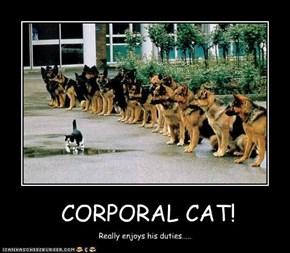 CORPORAL CAT!