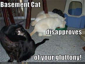 Basement Cat disapproves of your gluttony!
