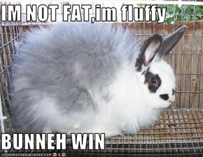 IM NOT FAT,im fluffy  BUNNEH WIN