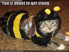You iz about to get stung.