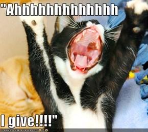 """Ahhhhhhhhhhhhh  I give!!!!"""