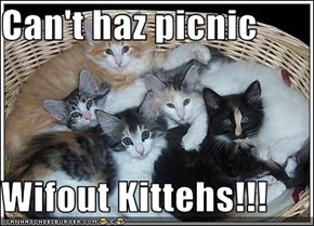 Can't haz picnic  Wifout Kittehs!!!