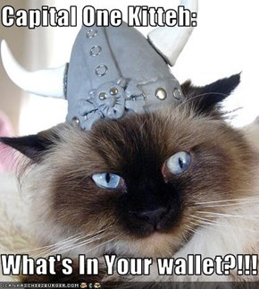 Capital One Kitteh:   What's In Your wallet?!!!