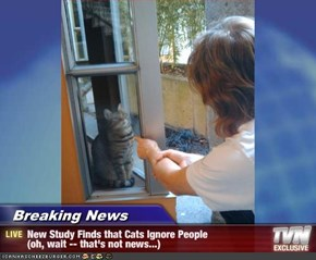Breaking News        - New Study Finds that Cats Ignore People                (oh, wait -- that's not news...)