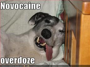Novocaine  overdoze