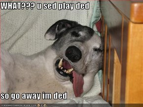 WHAT??? u sed play ded  so go away im ded