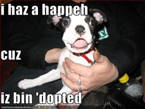 i haz a happeh cuz iz bin 'dopted