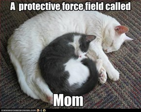 A  protective force field called