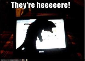 They're heeeeere!