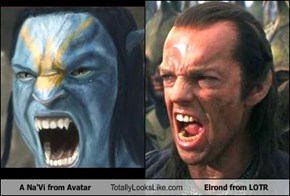 A Na'Vi from Avatar Totally Looks Like Elrond from LOTR