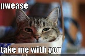 pwease  take me with you