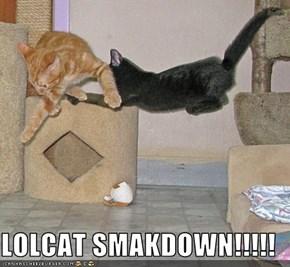 LOLCAT SMAKDOWN!!!!!