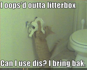I oops'd outta litterbox  Can I use dis? I bring bak.