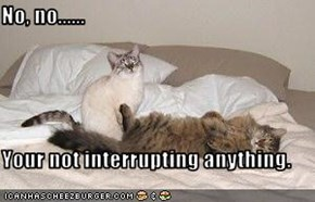 No, no......  Your not interrupting anything.