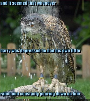 and it seemed that whenever harry was depressed he had his own little  raincloud constanly pouring down on him.