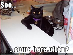 Soo...  ...come here often?