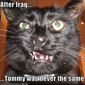 After Iraq...  ...Tommy was never the same