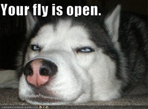 Your fly is open.