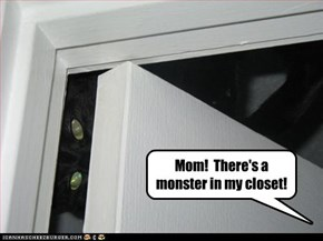 Mom!  There's a monster in my closet!