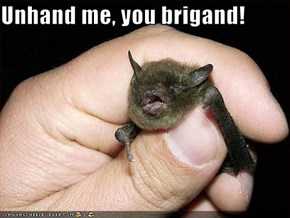 Unhand me, you brigand!